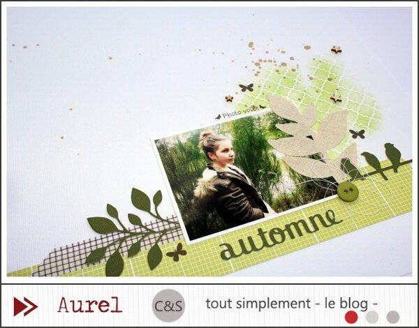 310115 - Automne - Tissu_2_blog