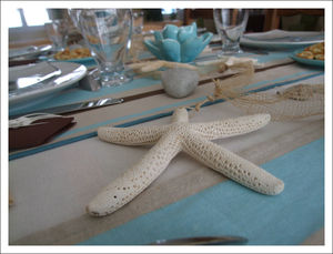 table_choco_turquoise_4