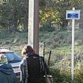 Promenades guides - 2014-11-08 - PB086985