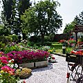 0560 - 15.07.2013 - Jardin papyclo