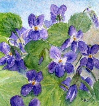 Sirop et gel e de violettes les horizons d 39 ewa for Peinture violette