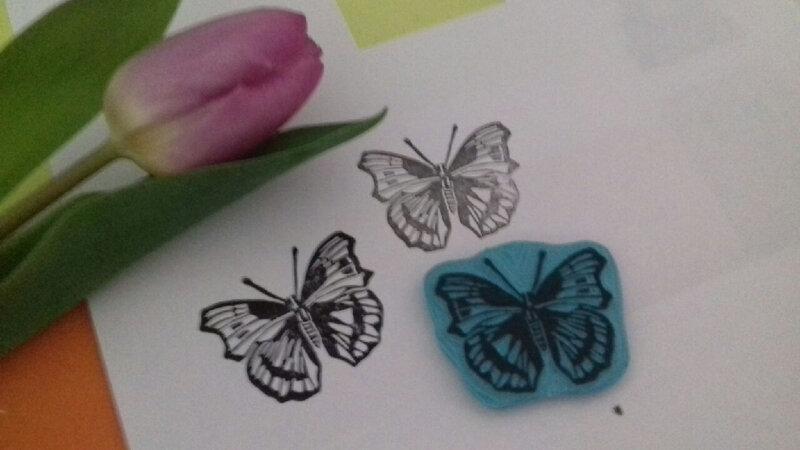 papillon (16)