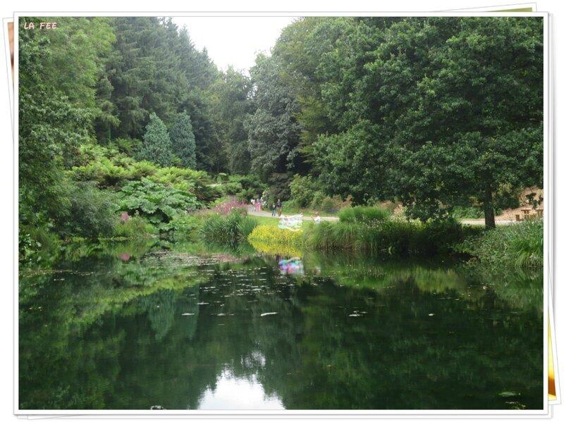 jardin botanique (44)