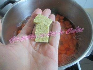 Soupe de légumes09