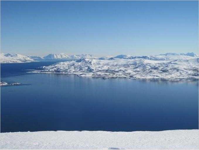 Dåfjorden