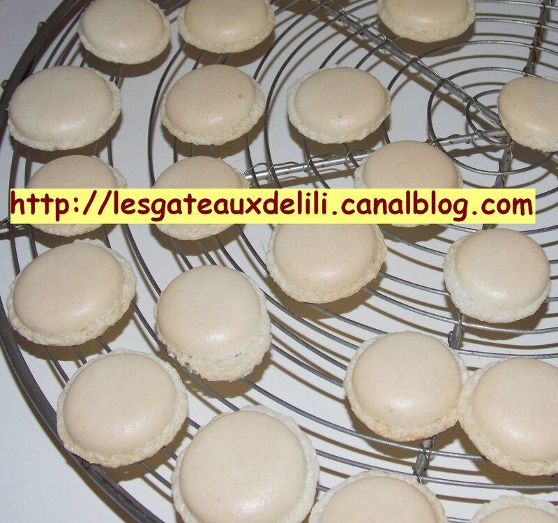 2014 01 26 - macarons (16)