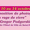 Gregor podgorski // la rage de vivre // saint-mandé