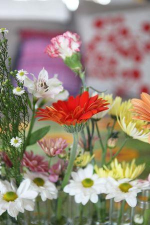 les_fleurs_d_avril_5