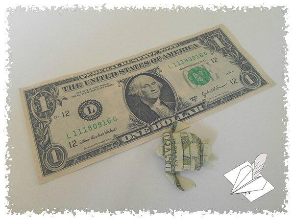 Dollar Tortue 002 blog