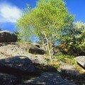 Les pierres civières 2 le maupuy