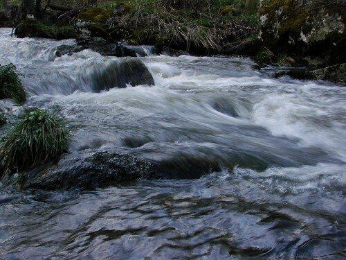 2008 04 23 Une rivère près du Chambon sur Lignon (8)