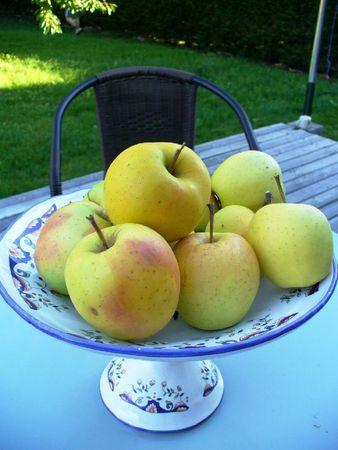 Pommes2_090911