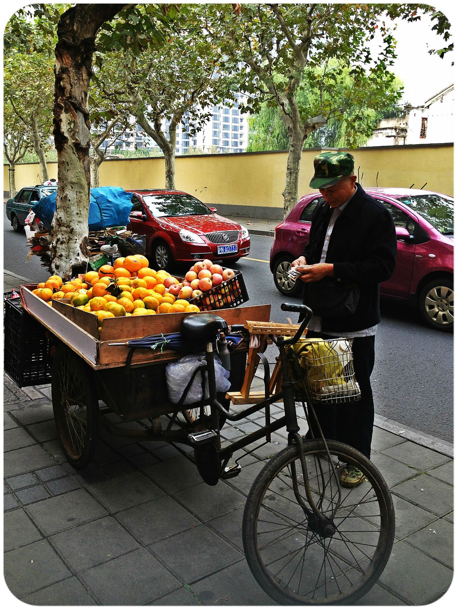 Shanghai-Velo Fruits