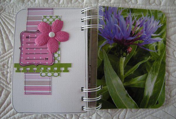Les_fleurs_de_Valloires__29_