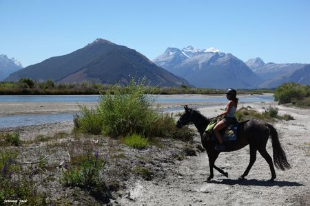 cheval glenorchy