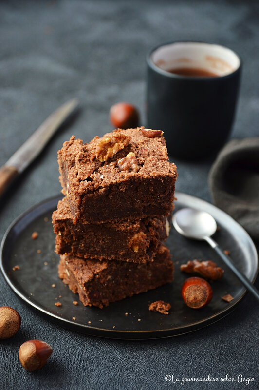 brownie chocolat okara vegan sans gluten sans farine sans oeufs