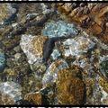 L'eau, abstraite! l'eau précieuse...