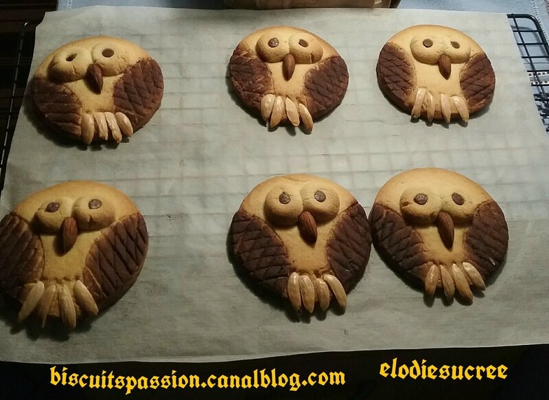 BISCUITS CHOUETTES 138