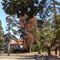 le parc à l'est du Manoir des Forges