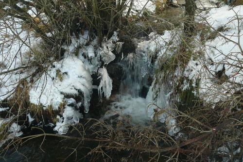 2008 12 30 Risseau qui coulle et l'eau qui gel