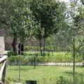 Jardin botanique de la flore vésuvienne antique