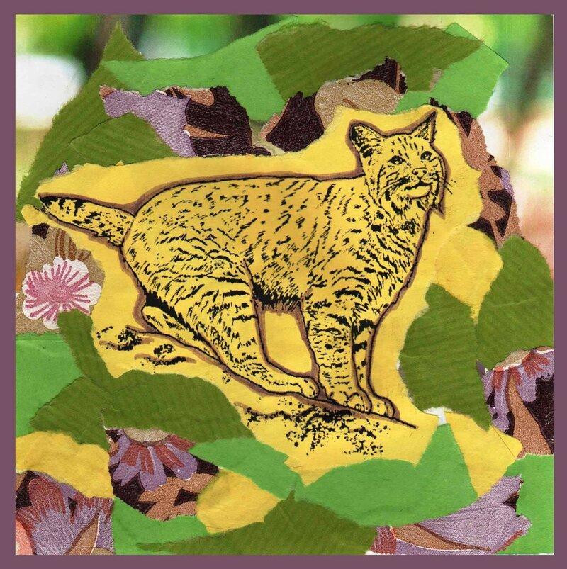 Carte artistique lynx modèle 1