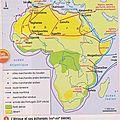 -les échanges en afrique entre le viiiè et le xviè siècles