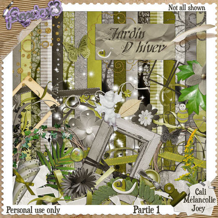 Collab_Part1_Jardin_hivers_Preview_big