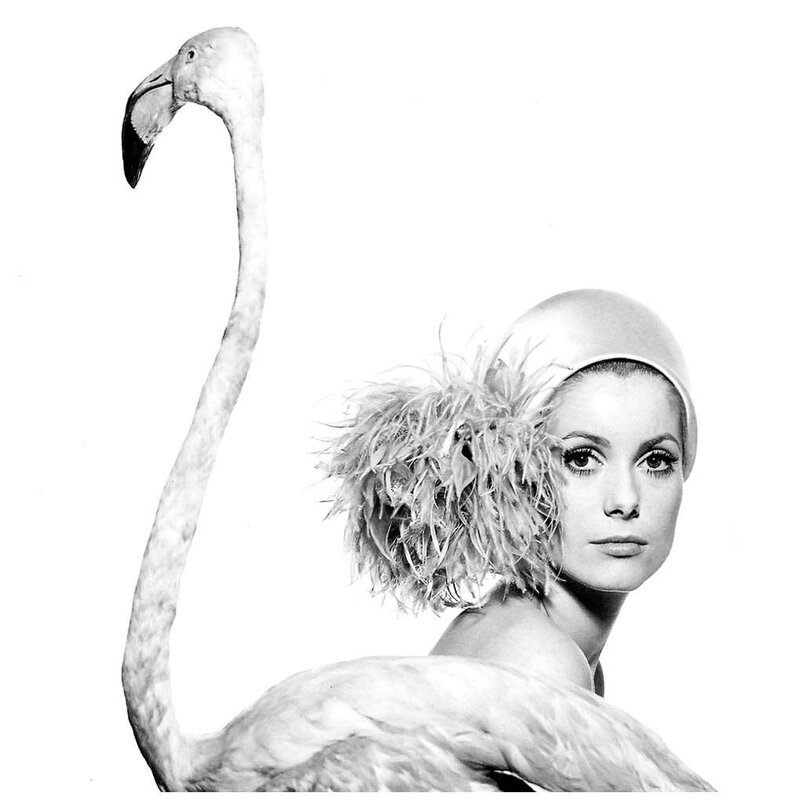 catherine_deneuve-1968-for_vogue_by_david_bailey-2