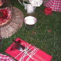 table picnic 032