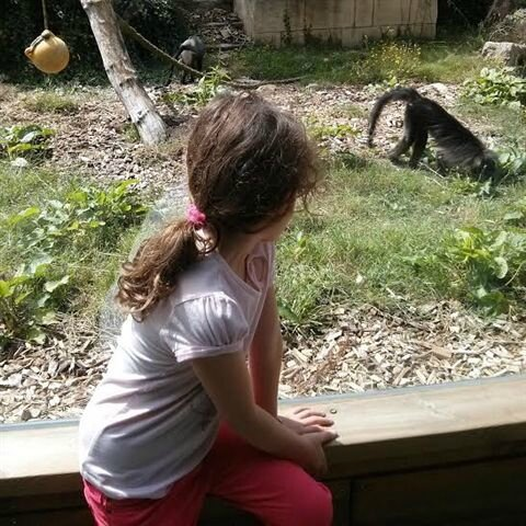 Une princesse au Zoo de Pont Scorff ©Kid Friendly