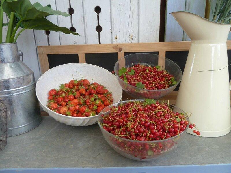 29-journée des fruits rouges (3)