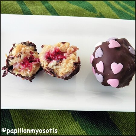 Cake Pops chocolat et fruits rouges_1
