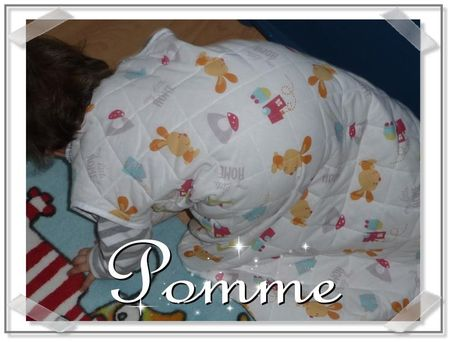pomme_rayures_bis