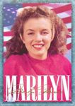 card_marilyn_serie1_num06