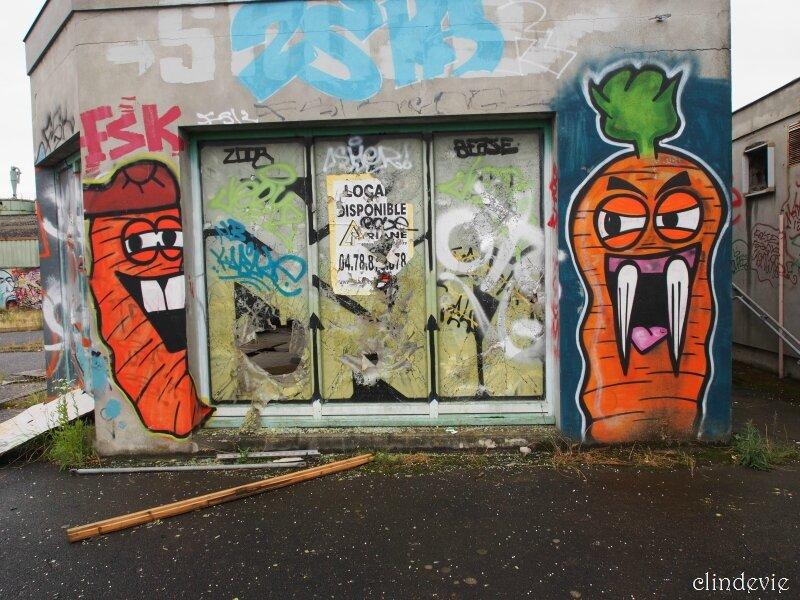 cdv_20130628_124_carotte