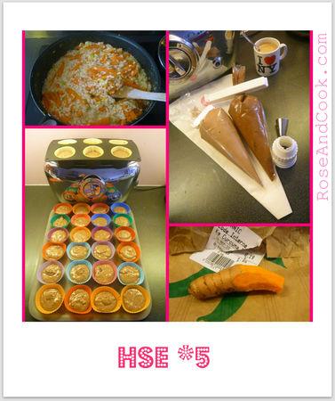 HSE5_2