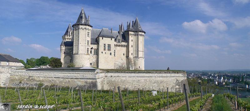 Chateau_de_Saumur