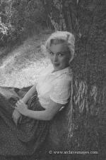 1953-09-02-LA-Laurel_Canyon-Tree_Sitting-014-1