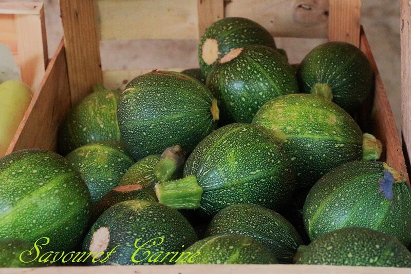 Magasin__Courgettes_rondes_