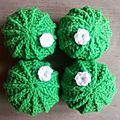 4 cactus vifs 1