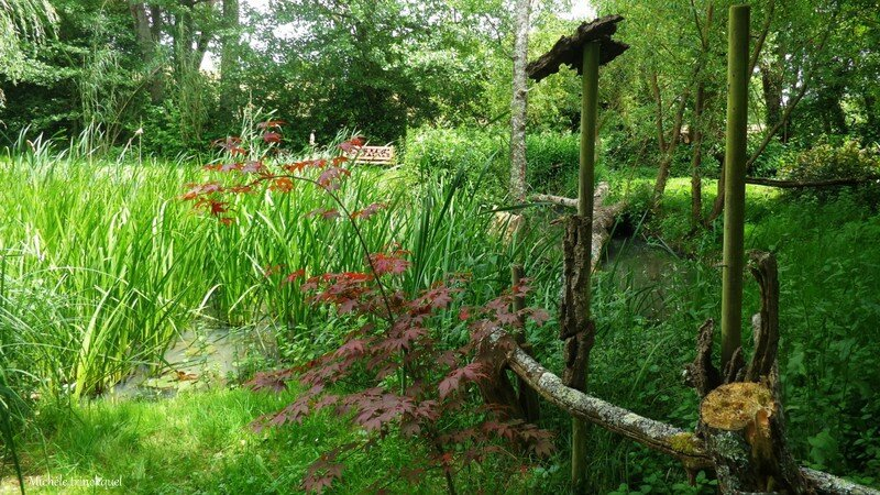 Jardin de la Source 12061641