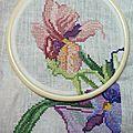 Bouquet d'iris DMC - en-cours (2)