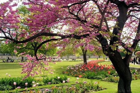 printempslouvre292923