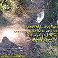 Adoration... vie chrétienne - gérald vann (citation)