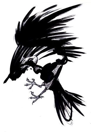 ink_oiseau_1
