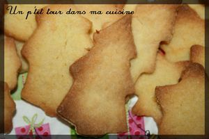 Biscuits_jus_d_orange__pices