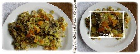 montage_poel_e_vegetarienn_zoom