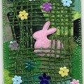 'Histoires de lapins...