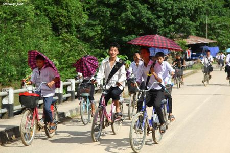 sortie d'ecole à vélo